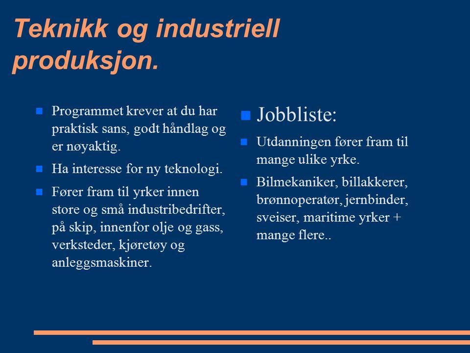 Teknikk og industriell produksjon.