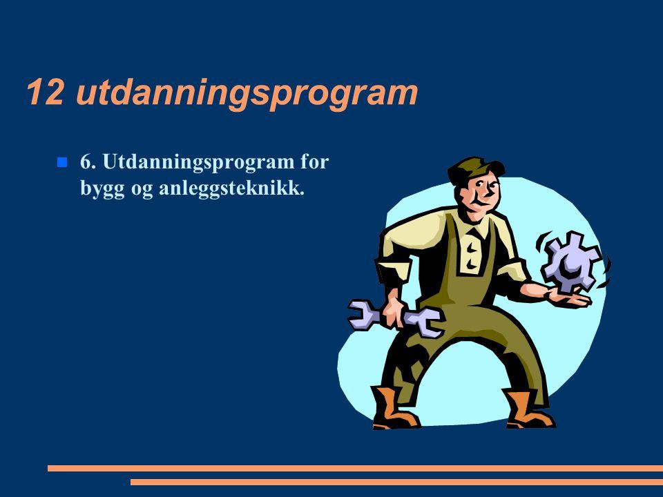 12 utdanningsprogram 6. Utdanningsprogram for bygg og anleggsteknikk.