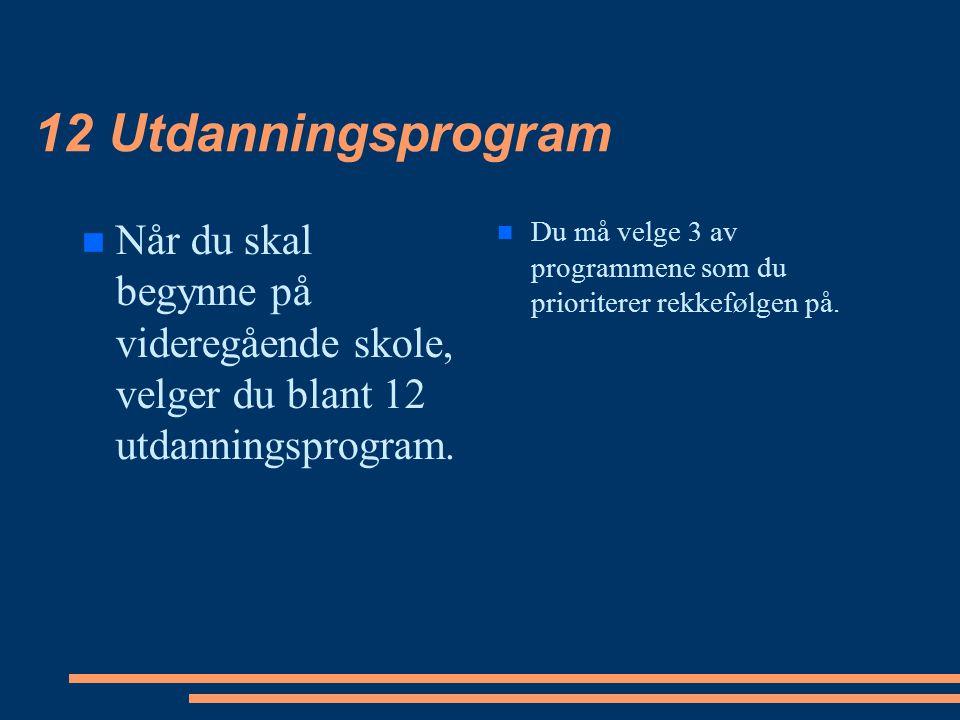 12 Utdanningsprogram Når du skal begynne på videregående skole, velger du blant 12 utdanningsprogram.