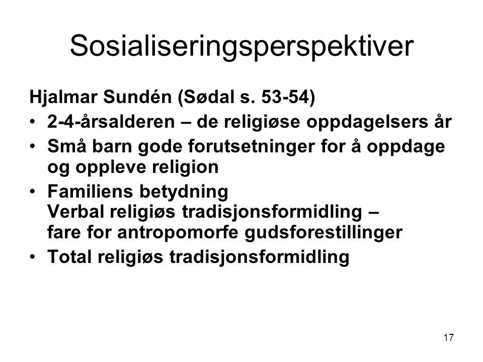 Sosialiseringsperspektiver