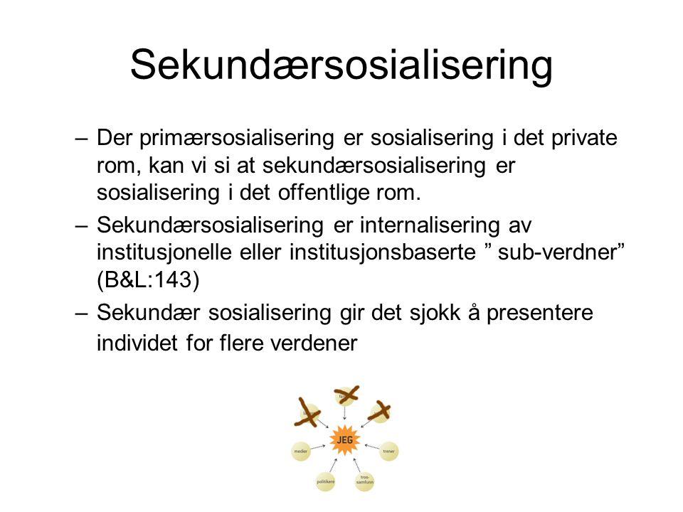 Sekundærsosialisering