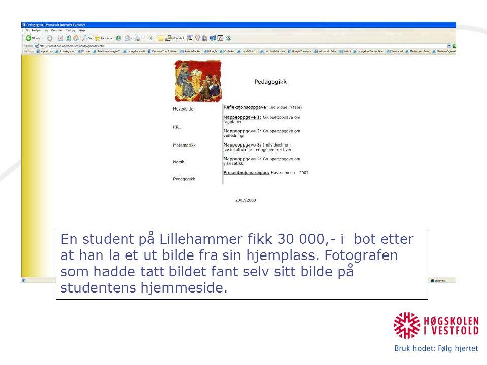 En student på Lillehammer fikk 30 000,- i bot etter at han la et ut bilde fra sin hjemplass.
