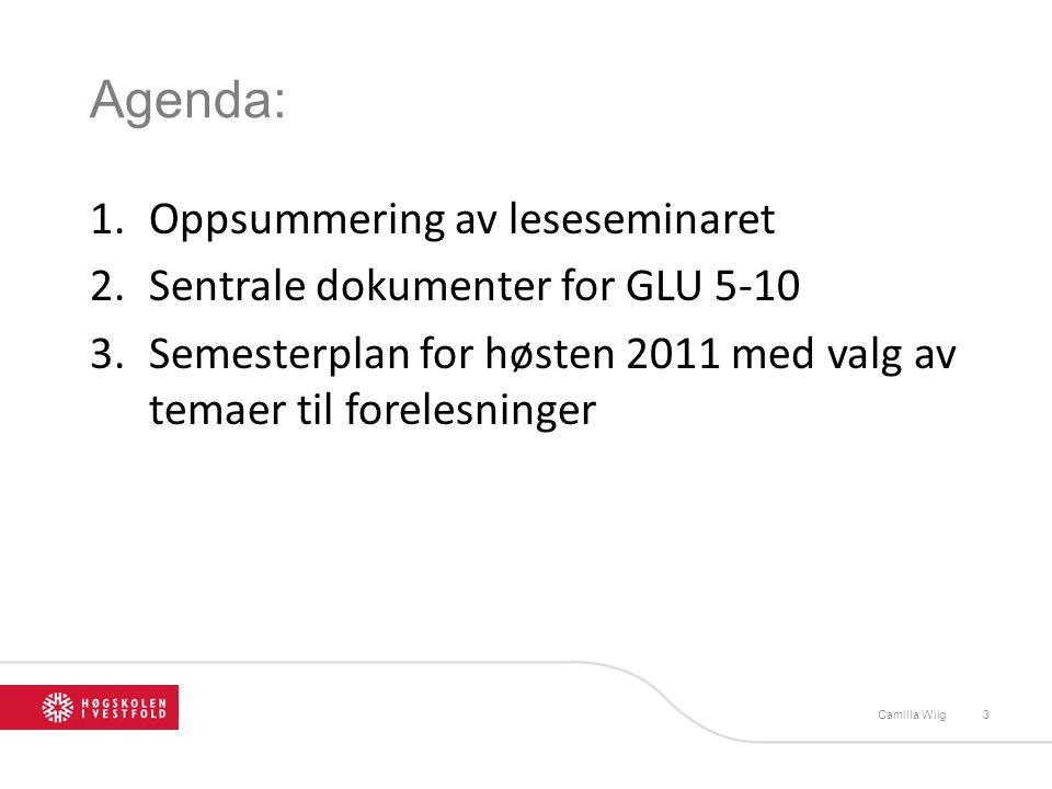 Agenda: Oppsummering av leseseminaret Sentrale dokumenter for GLU 5-10