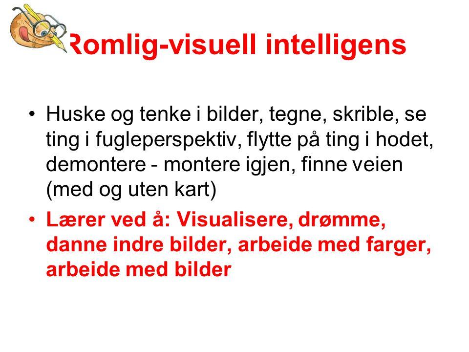Romlig-visuell intelligens