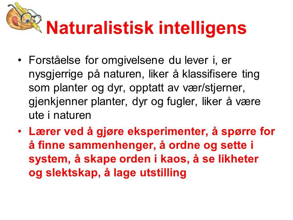 Naturalistisk intelligens