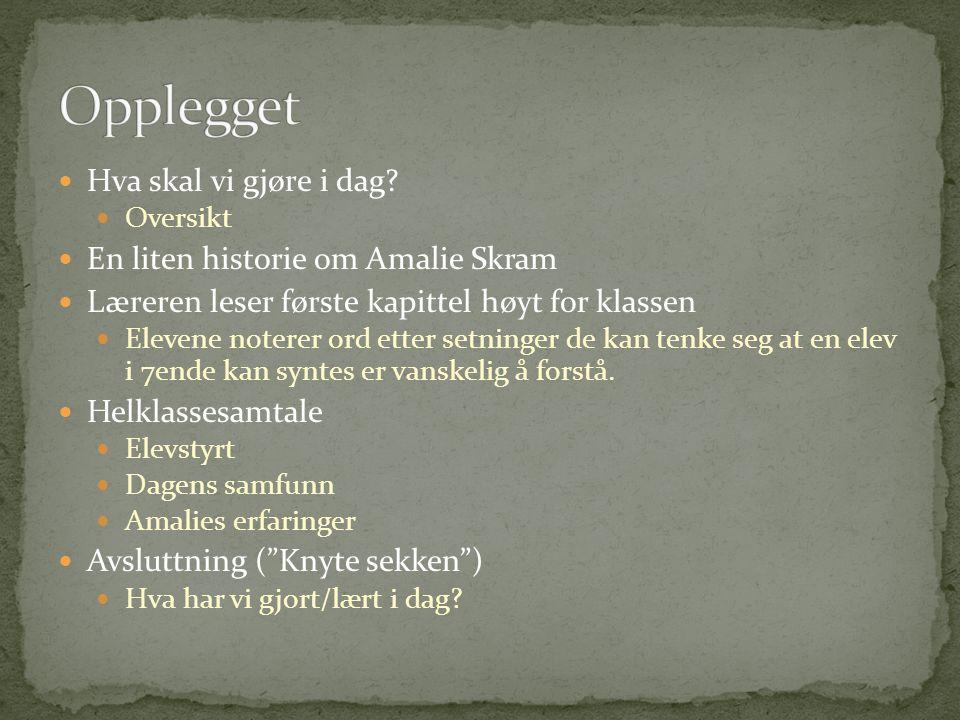 Opplegget Hva skal vi gjøre i dag En liten historie om Amalie Skram