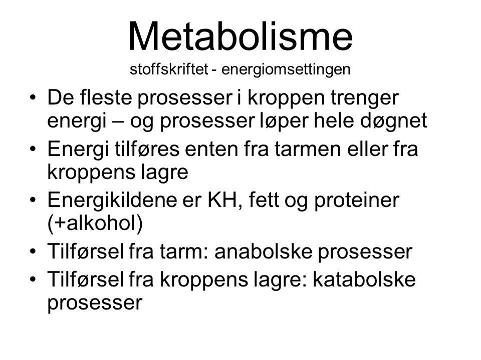 Metabolisme stoffskriftet - energiomsettingen