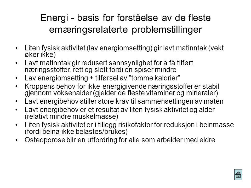 Energi - basis for forståelse av de fleste ernæringsrelaterte problemstillinger