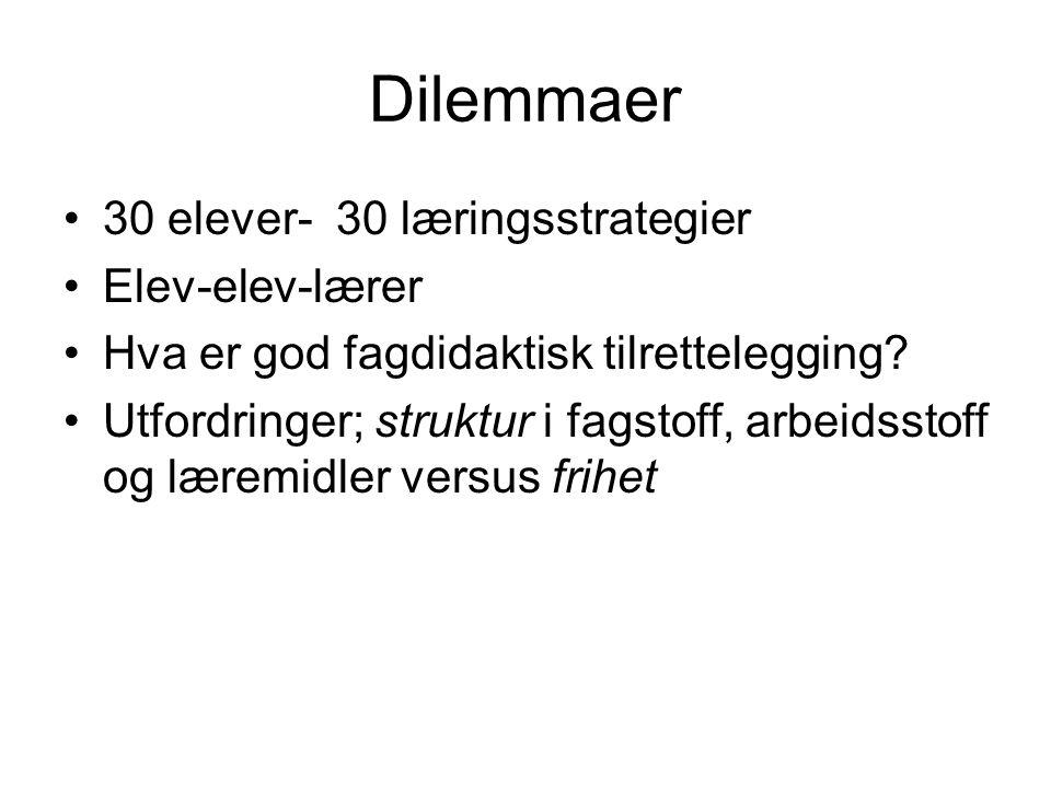 Dilemmaer 30 elever- 30 læringsstrategier Elev-elev-lærer