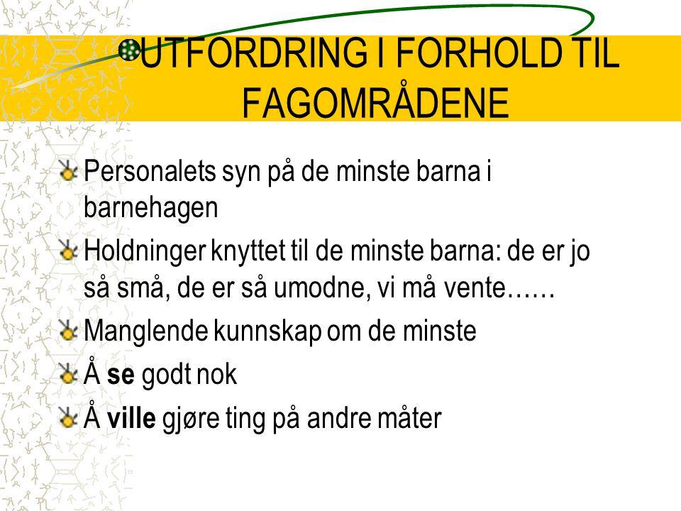 UTFORDRING I FORHOLD TIL FAGOMRÅDENE