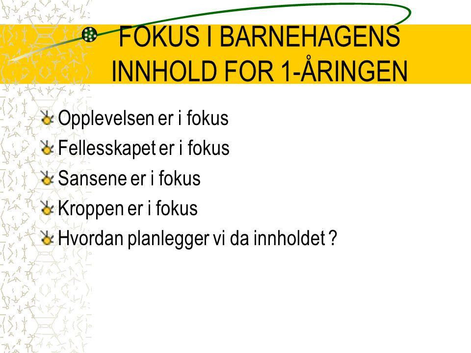 FOKUS I BARNEHAGENS INNHOLD FOR 1-ÅRINGEN