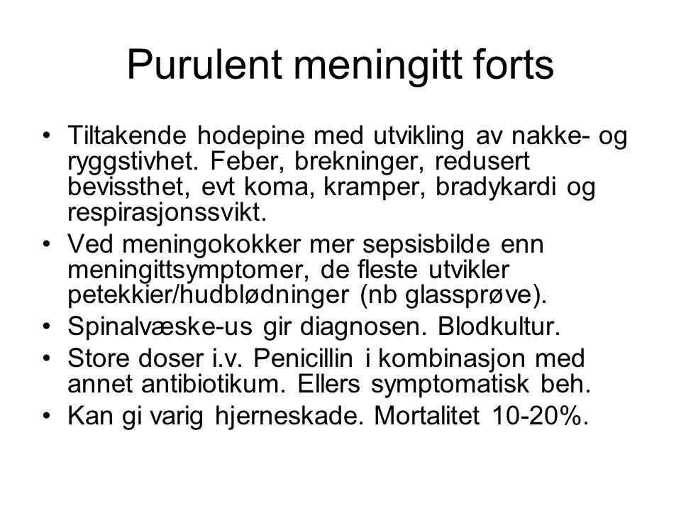 Purulent meningitt forts