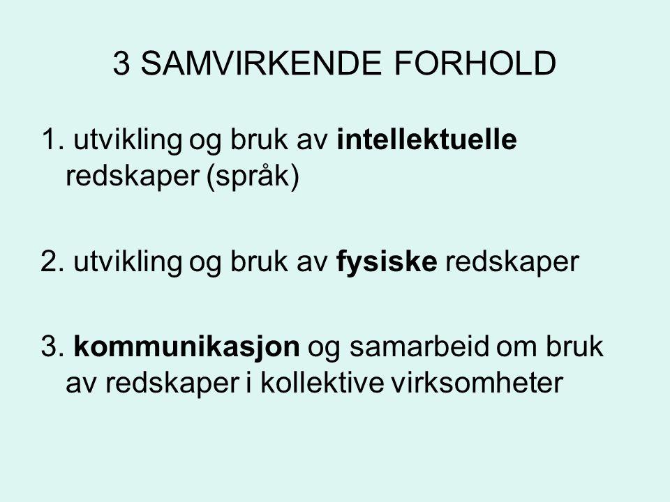 3 SAMVIRKENDE FORHOLD 1. utvikling og bruk av intellektuelle redskaper (språk) 2. utvikling og bruk av fysiske redskaper.