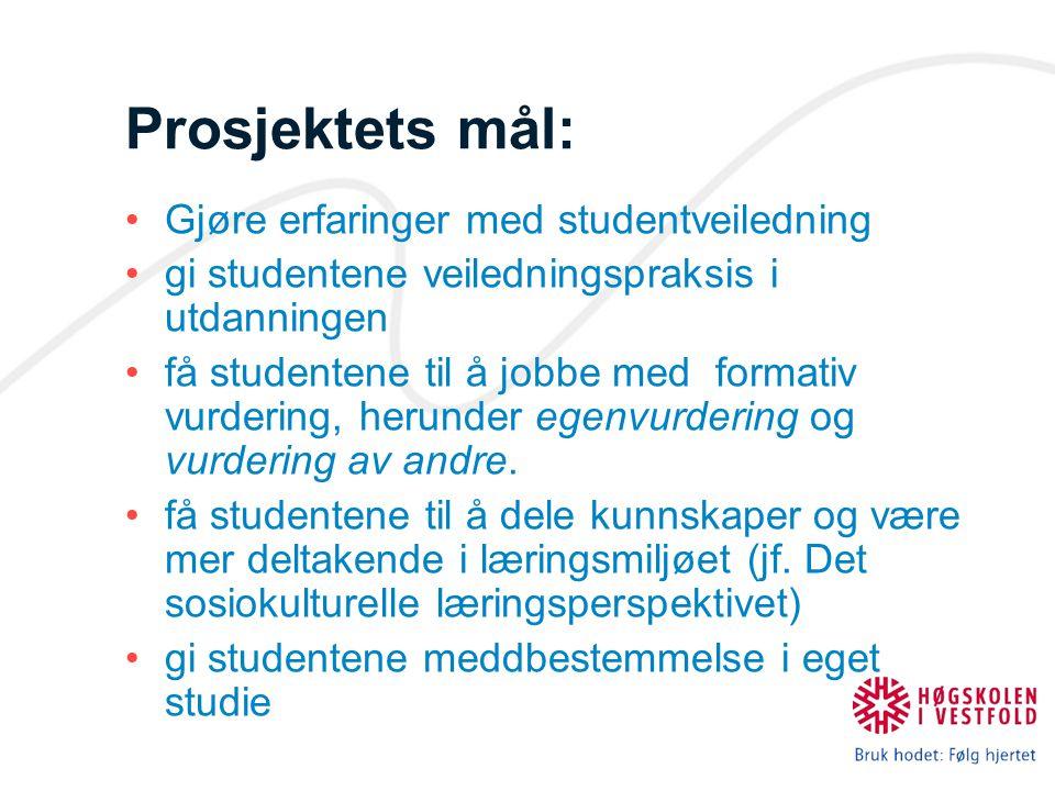 Prosjektets mål: Gjøre erfaringer med studentveiledning
