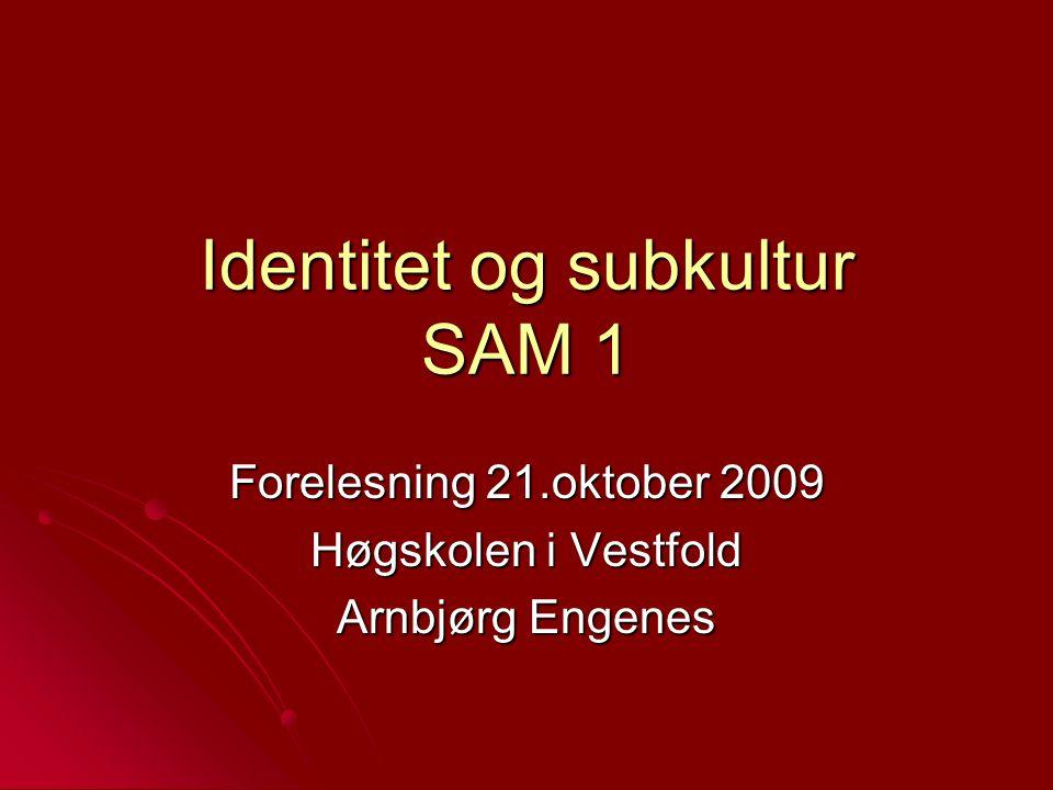Identitet og subkultur SAM 1