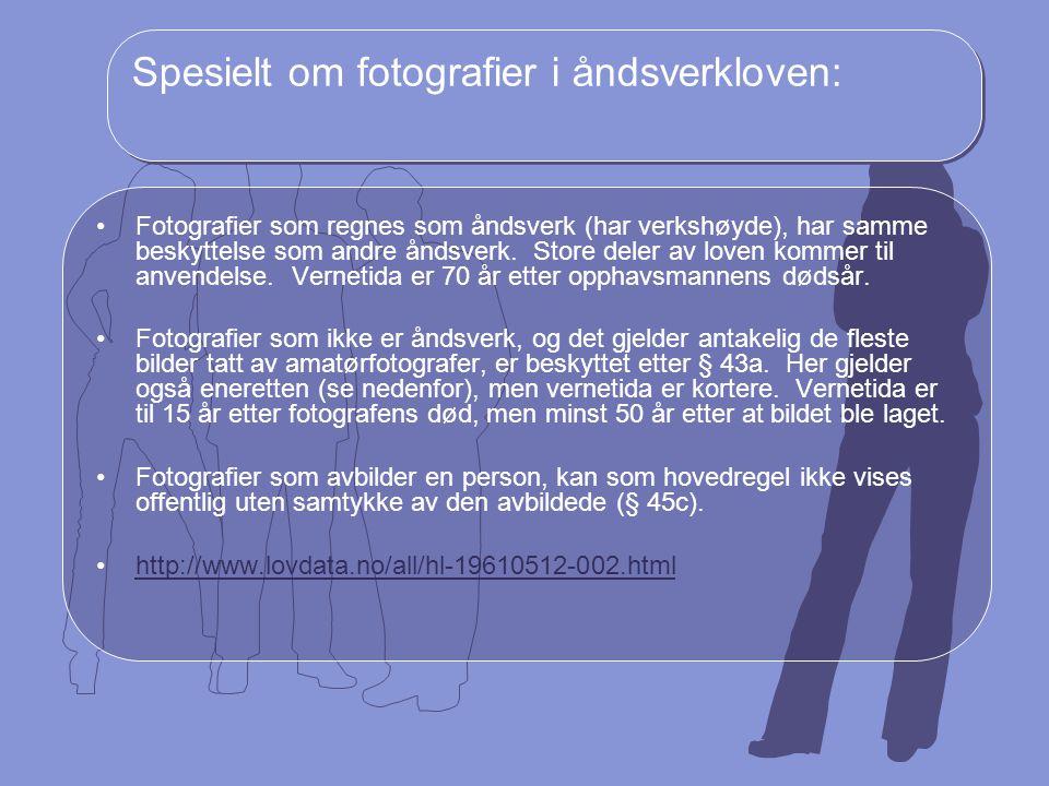 Spesielt om fotografier i åndsverkloven: