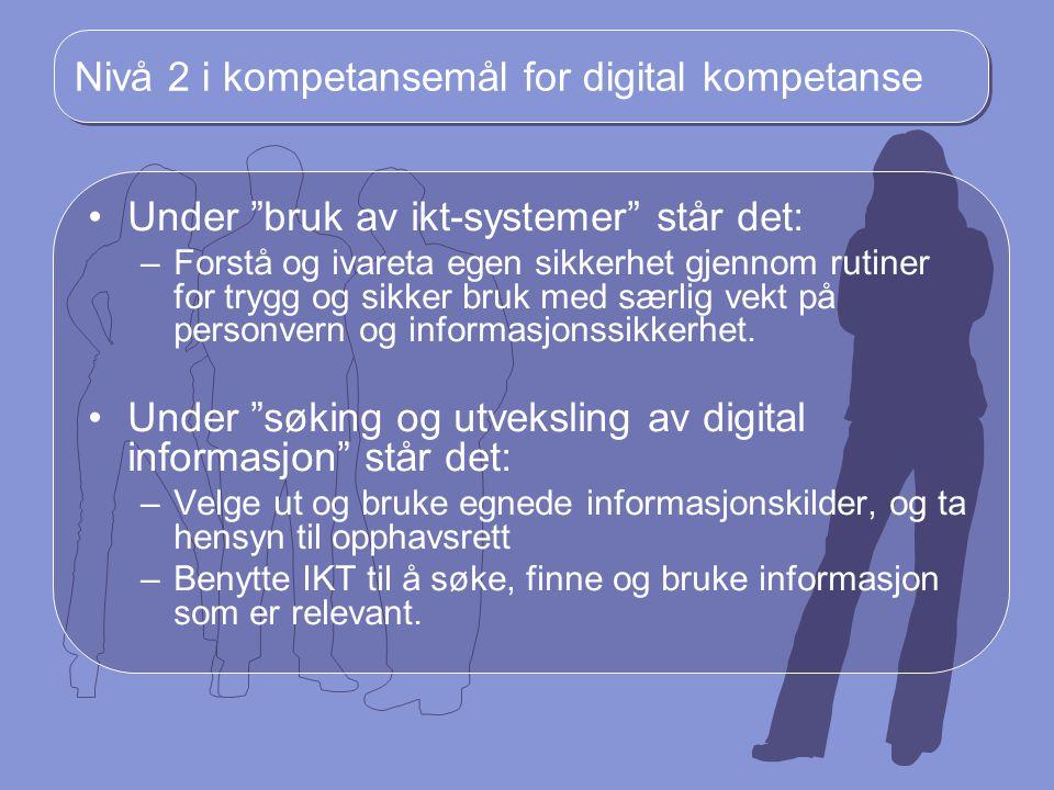 Nivå 2 i kompetansemål for digital kompetanse