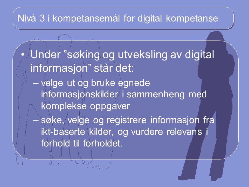 Nivå 3 i kompetansemål for digital kompetanse