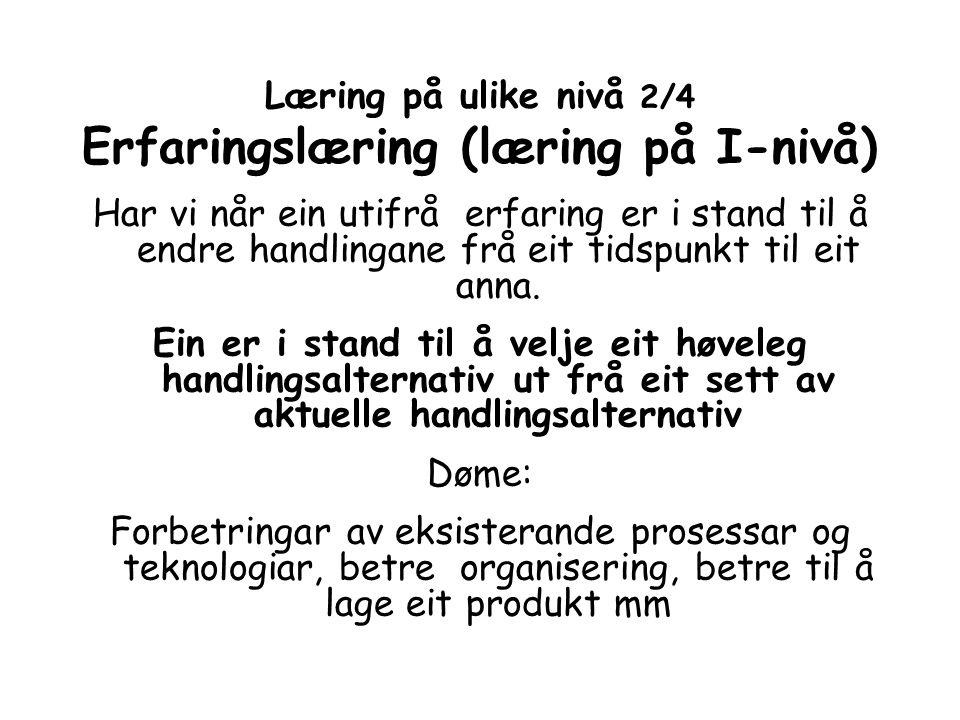 Læring på ulike nivå 2/4 Erfaringslæring (læring på I-nivå)