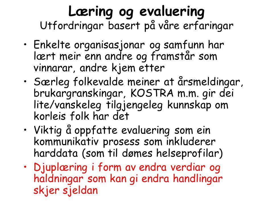 Læring og evaluering Utfordringar basert på våre erfaringar