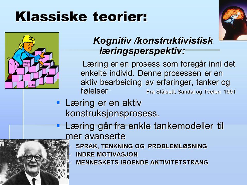 Klassiske teorier: Kognitiv /konstruktivistisk læringsperspektiv: