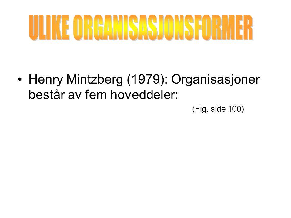 ULIKE ORGANISASJONSFORMER