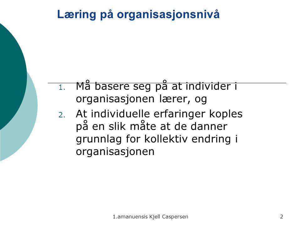 Læring på organisasjonsnivå
