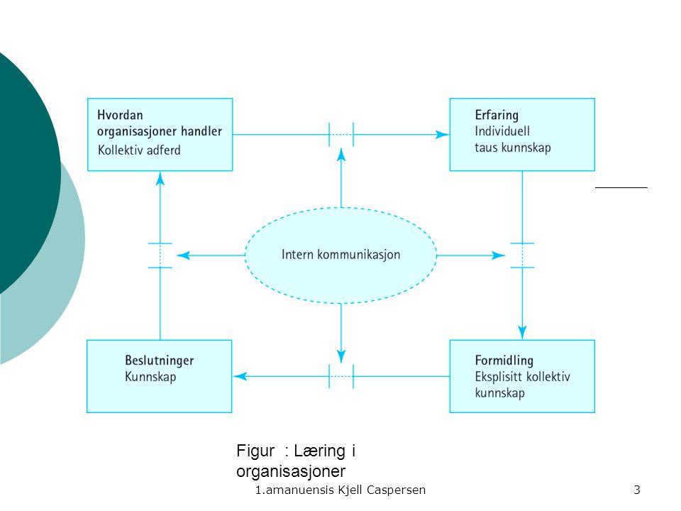 Figur : Læring i organisasjoner