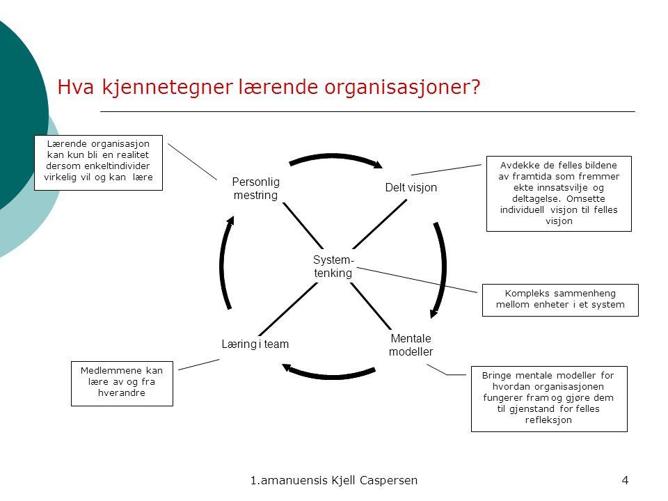 Hva kjennetegner lærende organisasjoner