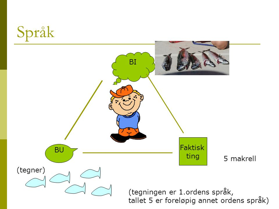 Språk BI Faktisk BU ting 5 makrell (tegner)