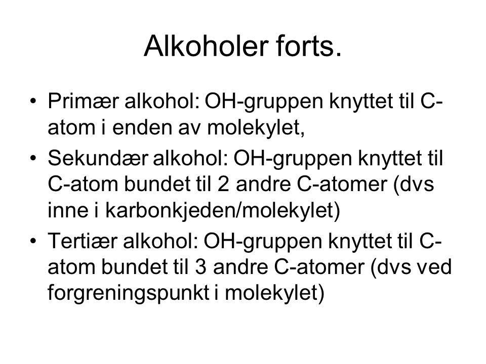 Alkoholer forts. Primær alkohol: OH-gruppen knyttet til C-atom i enden av molekylet,