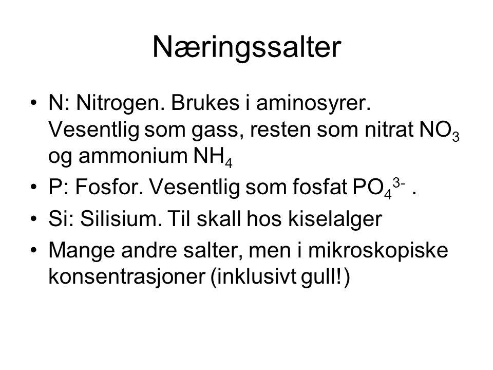 Næringssalter N: Nitrogen. Brukes i aminosyrer. Vesentlig som gass, resten som nitrat NO3 og ammonium NH4.