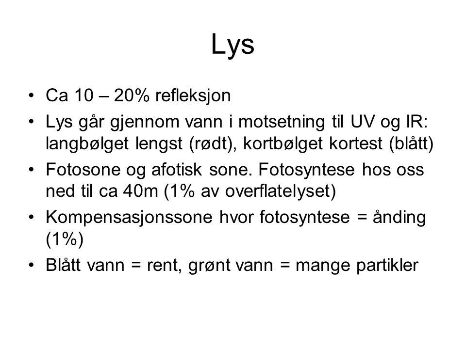 Lys Ca 10 – 20% refleksjon. Lys går gjennom vann i motsetning til UV og IR: langbølget lengst (rødt), kortbølget kortest (blått)