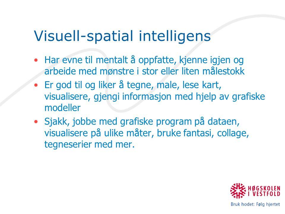 Visuell-spatial intelligens