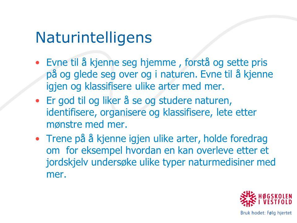 Naturintelligens