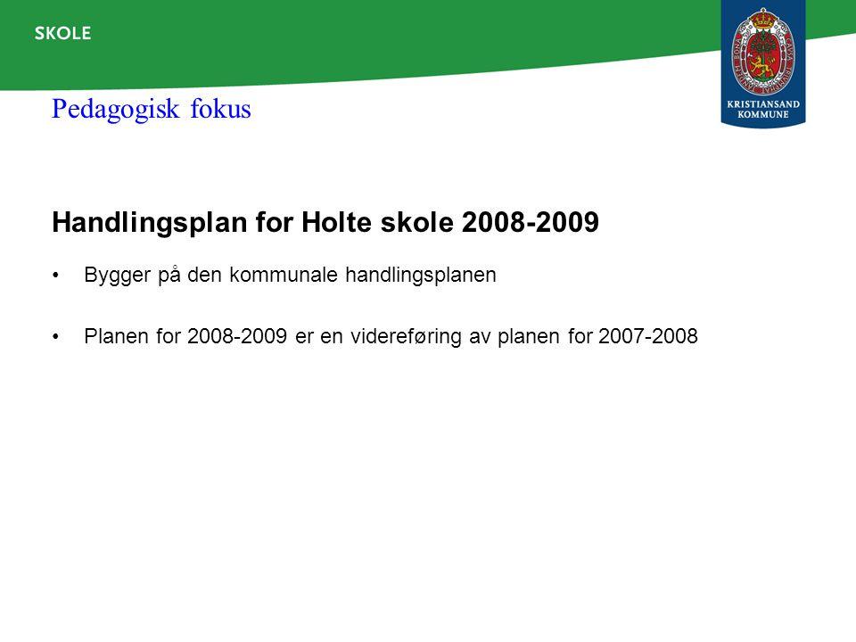 Handlingsplan for Holte skole 2008-2009