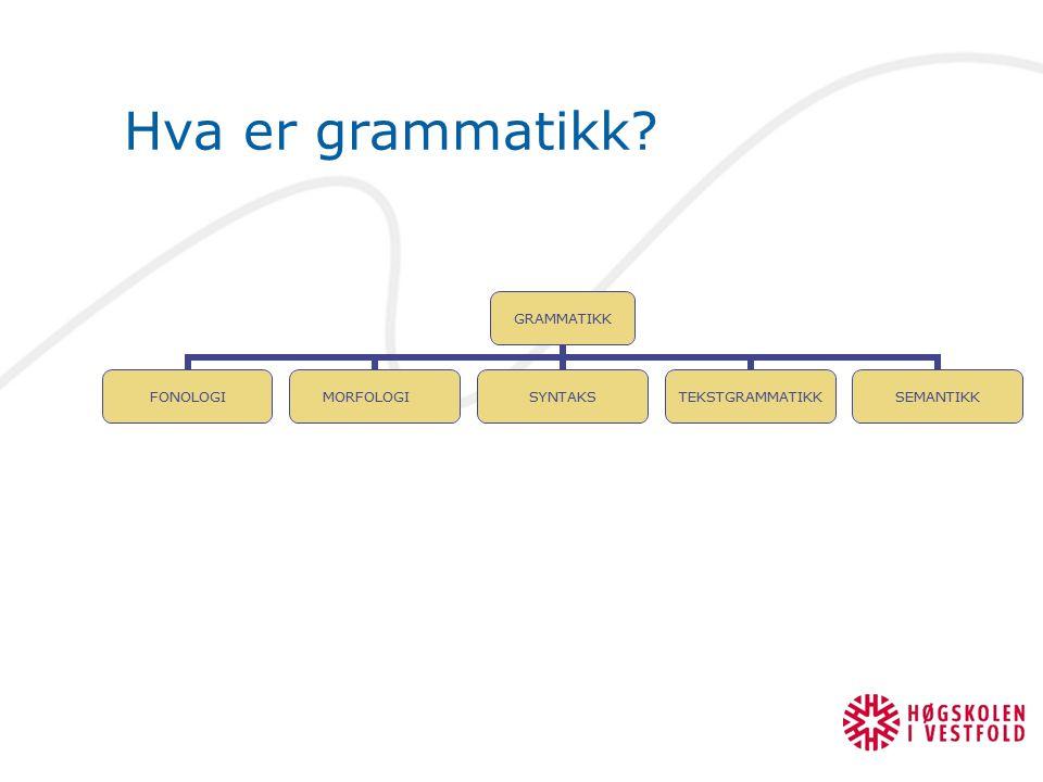 Hva er grammatikk
