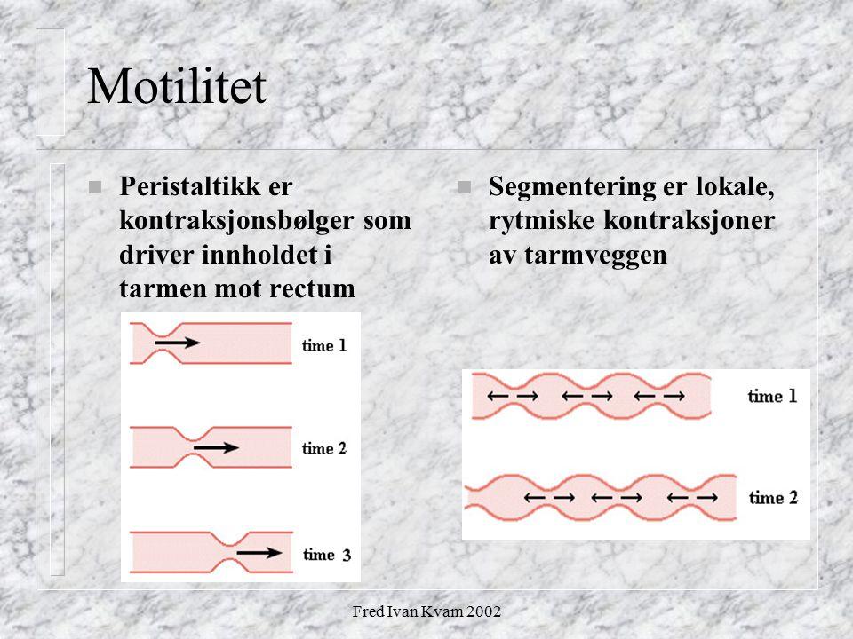 Motilitet Peristaltikk er kontraksjonsbølger som driver innholdet i tarmen mot rectum. Segmentering er lokale, rytmiske kontraksjoner av tarmveggen.