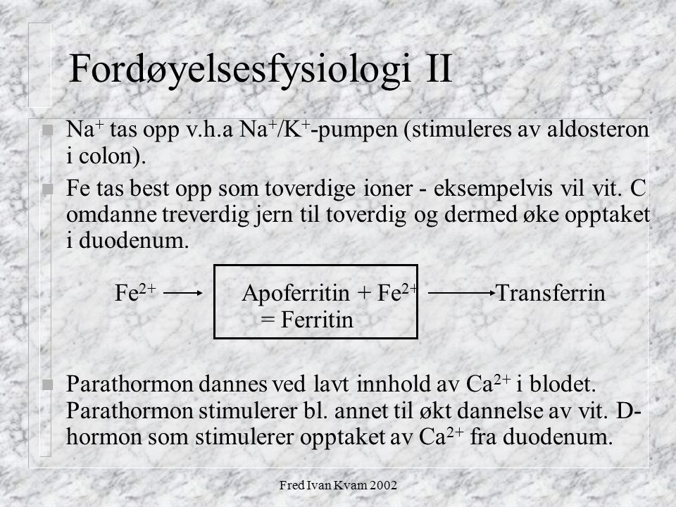 Fordøyelsesfysiologi II