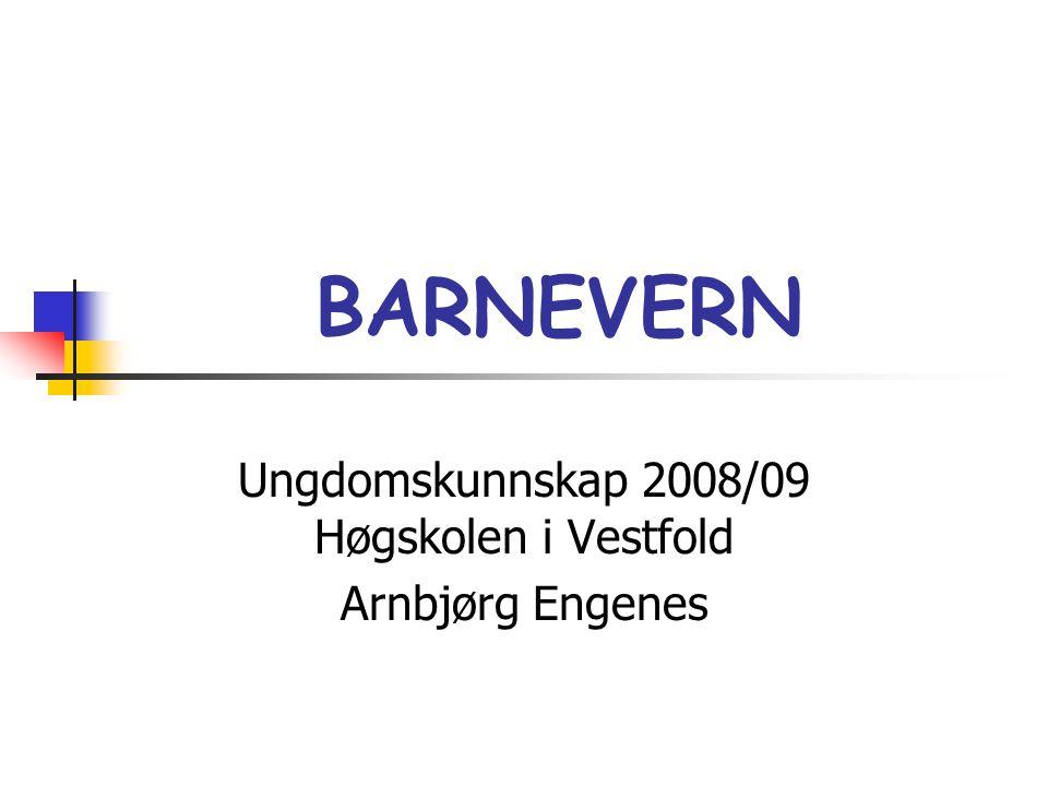 Ungdomskunnskap 2008/09 Høgskolen i Vestfold Arnbjørg Engenes