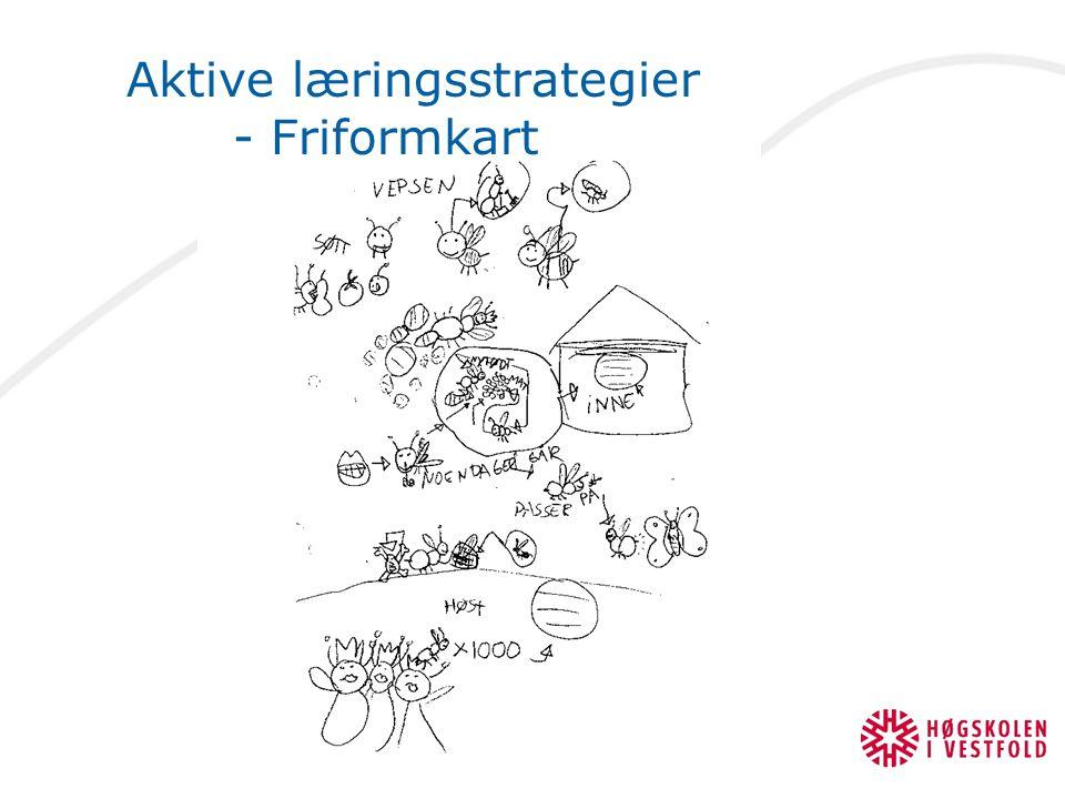 Aktive læringsstrategier - Friformkart