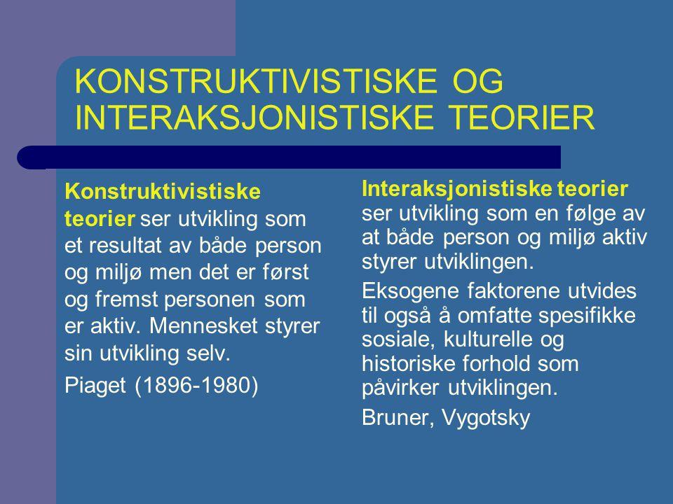 KONSTRUKTIVISTISKE OG INTERAKSJONISTISKE TEORIER