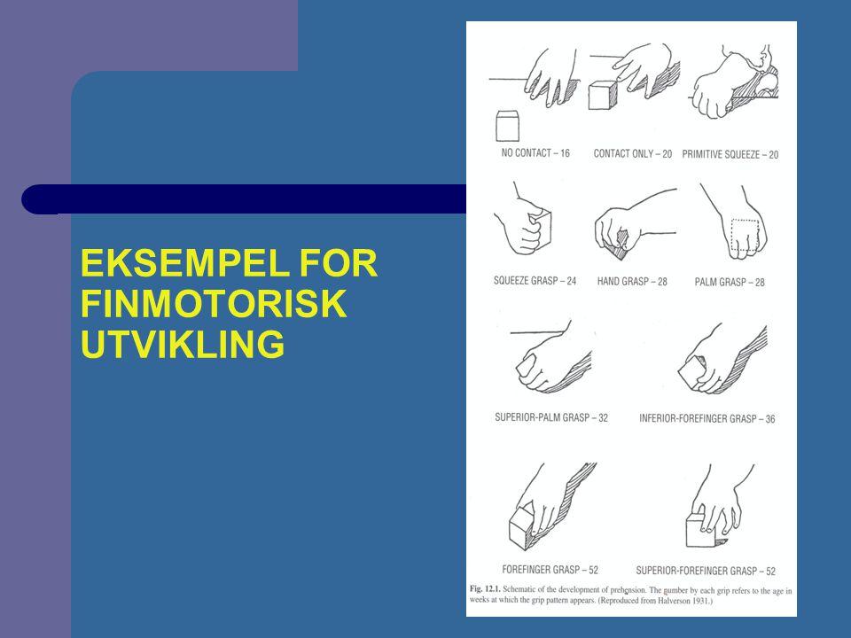 EKSEMPEL FOR FINMOTORISK UTVIKLING