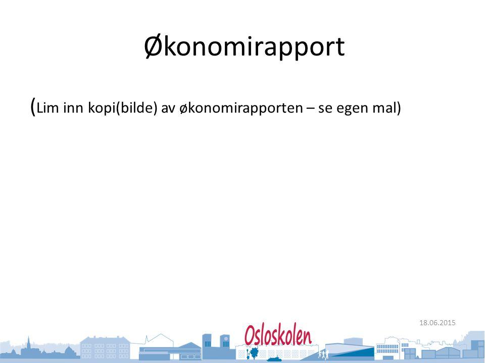 Økonomirapport (Lim inn kopi(bilde) av økonomirapporten – se egen mal)
