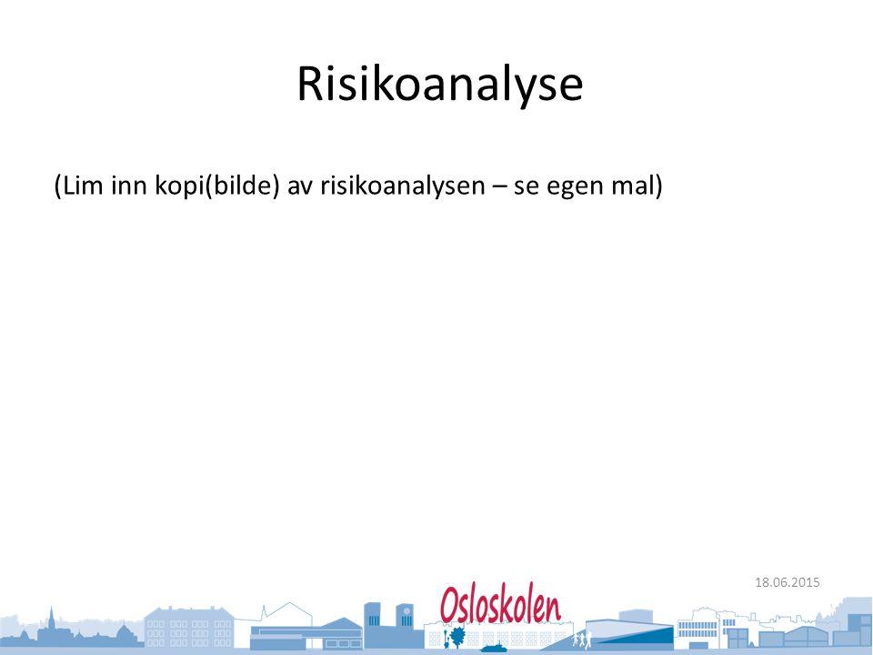 Risikoanalyse (Lim inn kopi(bilde) av risikoanalysen – se egen mal)