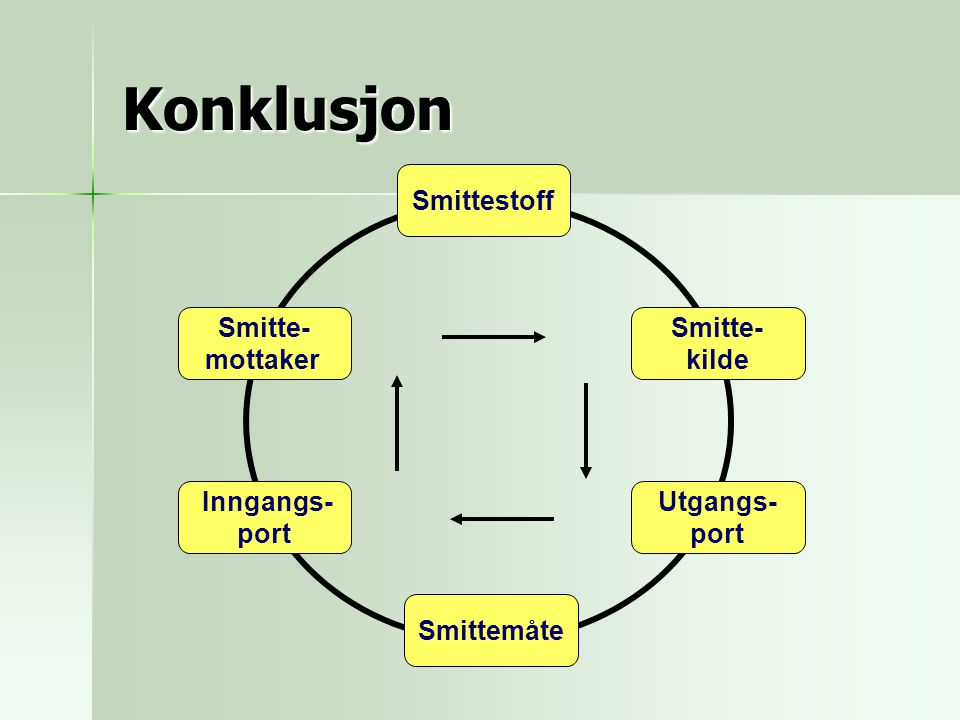 Konklusjon Smittestoff Smitte- mottaker Smitte- kilde Inngangs- port