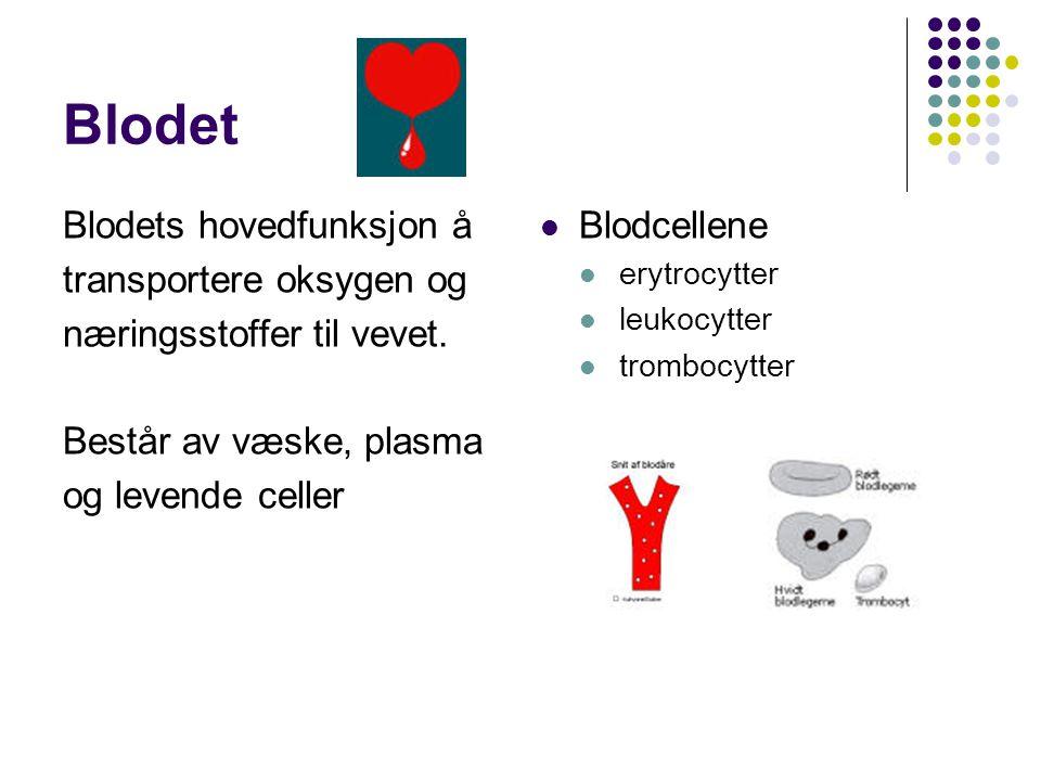 Blodet Blodets hovedfunksjon å transportere oksygen og