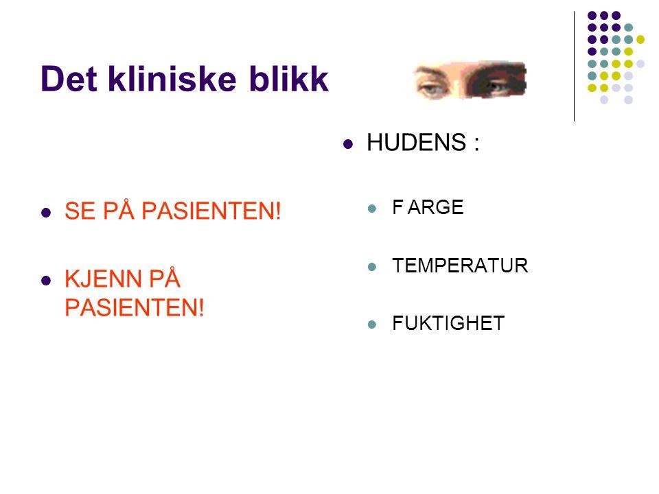 Det kliniske blikk HUDENS : SE PÅ PASIENTEN! KJENN PÅ PASIENTEN!