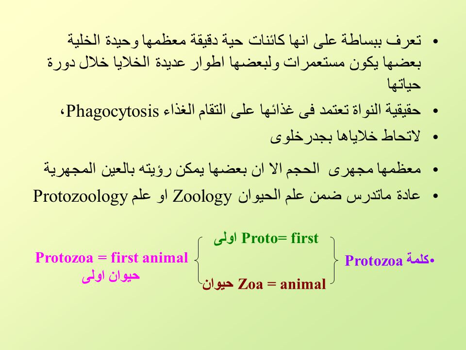 Protozoa = first animal حيوان اولى