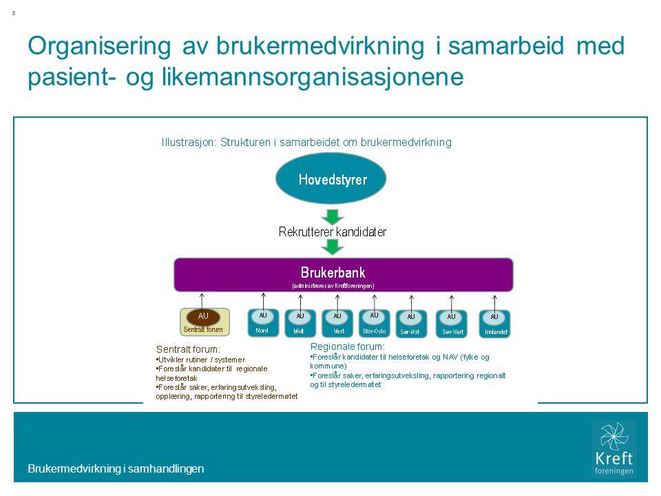 Organisering av brukermedvirkning i samarbeid med pasient- og likemannsorganisasjonene